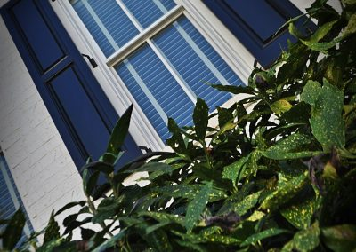 Outdoor shutters of Harmony Raised Panel Shutters with bush in foreground.