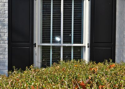 Outdoor shutters of Harmony Raised Panel Shutters behind a bush.